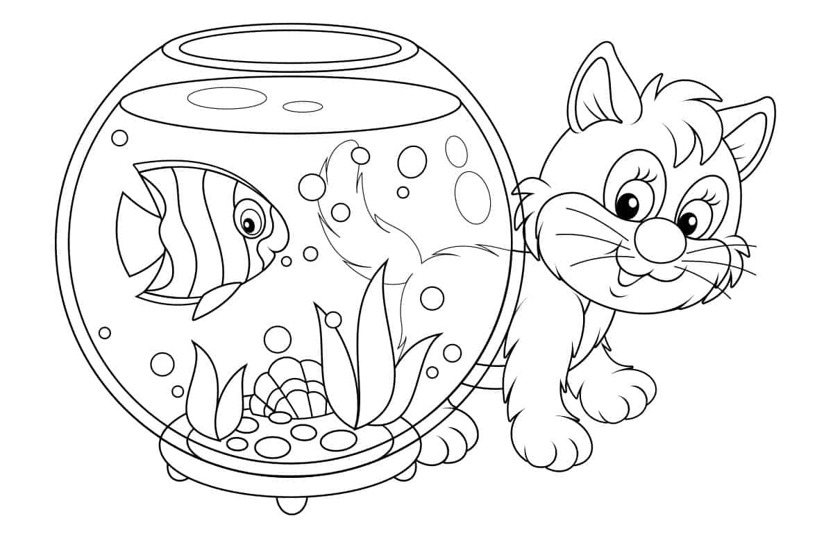 Kucing dan akuarium