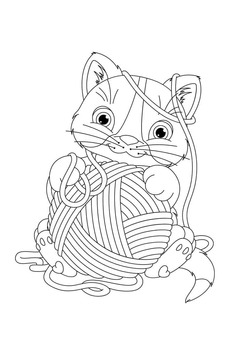 Kucing dan benang