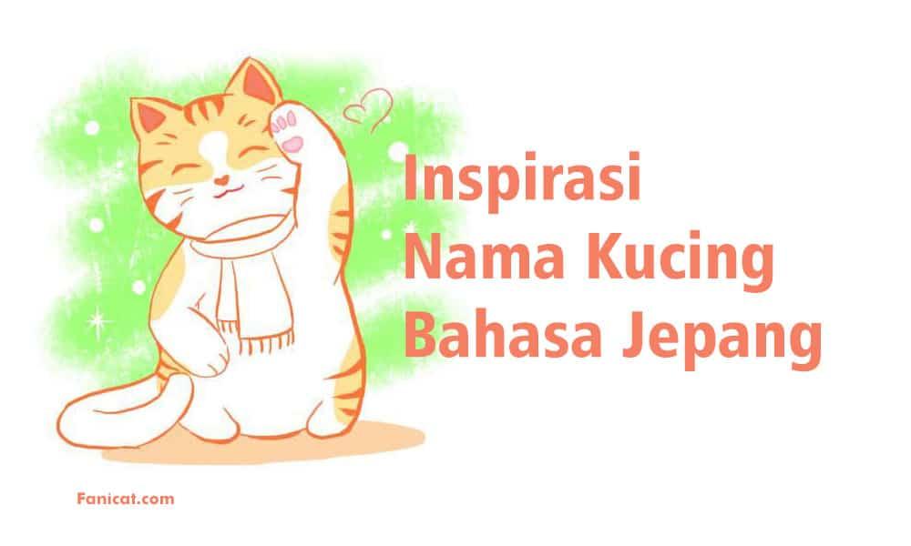 140 Nama Kucing Jepang Yang Bagus Beserta Artinya Fanicat