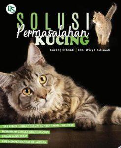 Solusi permasalahan kucing