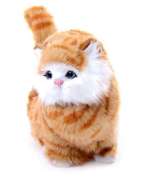 Jual boneka kucing coklat