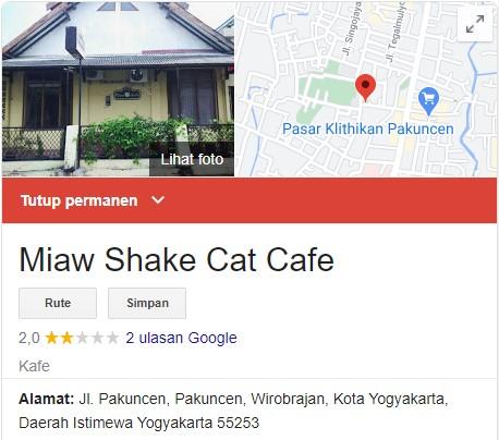 Miaw shake cat cafe