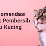 Pentingnya Menyediakan Antiseptik Untuk Luka Kucing