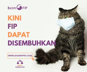 Basmi FIP